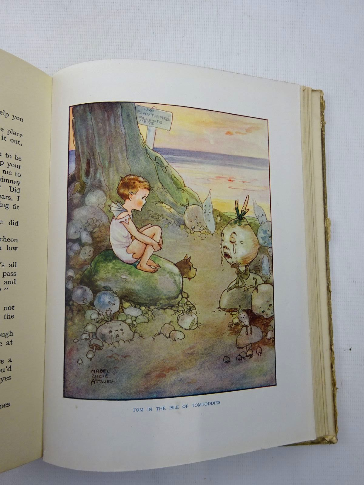 Photo of THE WATER BABIES written by Kingsley, Charles illustrated by Attwell, Mabel Lucie published by Raphael Tuck & Sons Ltd. (STOCK CODE: 2127172)  for sale by Stella & Rose's Books