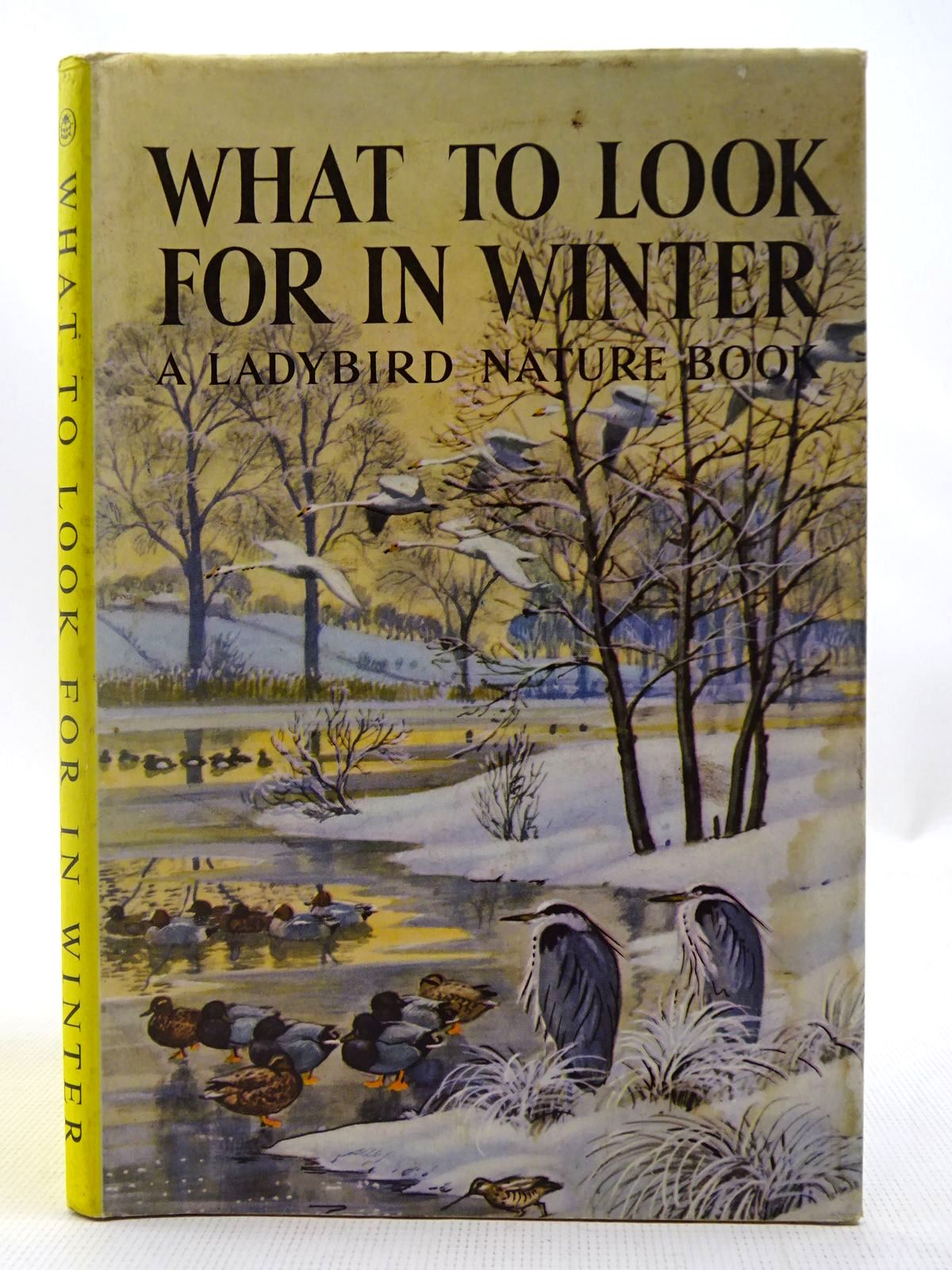 Photo of WHAT TO LOOK FOR IN WINTER written by Watson, E.L. Grant illustrated by Tunnicliffe, C.F. published by Wills & Hepworth Ltd. (STOCK CODE: 2127479)  for sale by Stella & Rose's Books