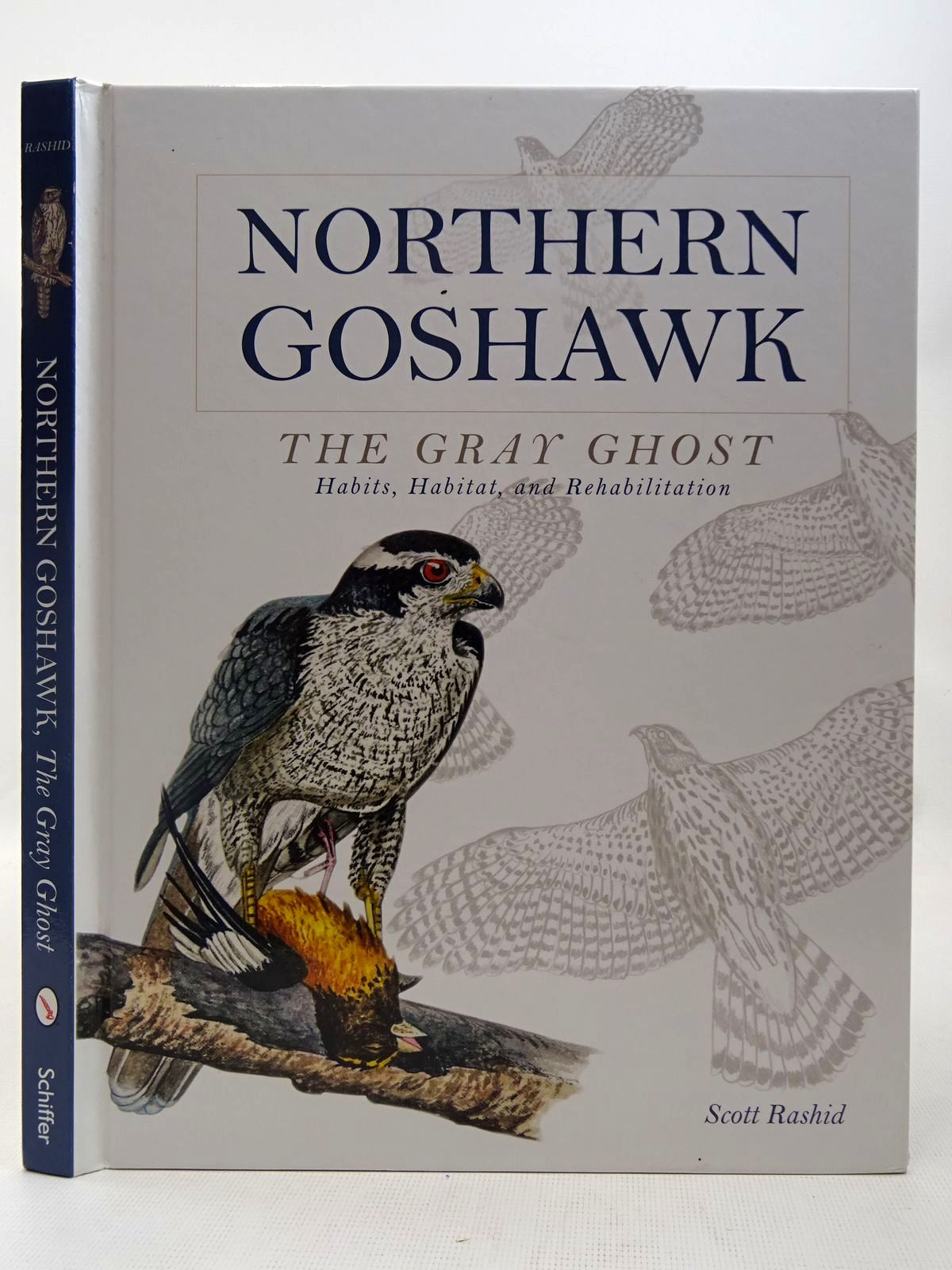 Photo of NORTHERN GOSHAWK THE GRAY GHOST written by Rashid, Scott illustrated by Rashid, Scott published by Schiffer Publishing Ltd. (STOCK CODE: 2127610)  for sale by Stella & Rose's Books