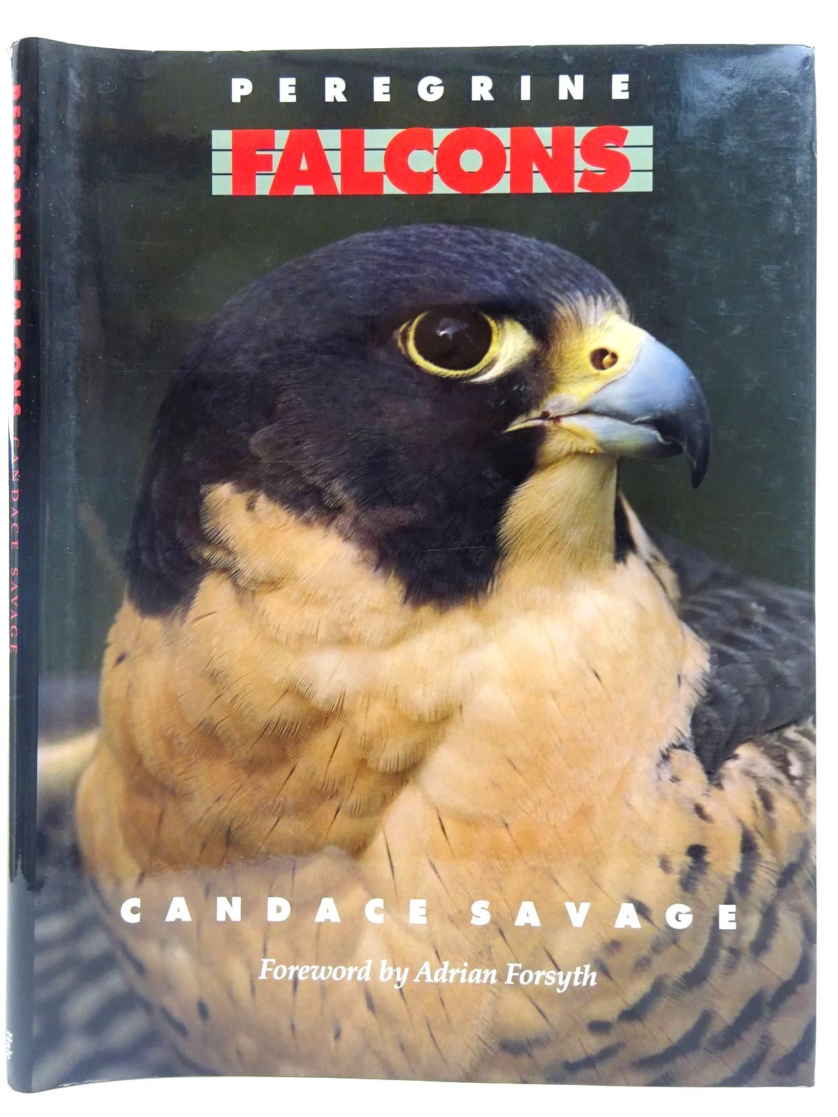 Photo of PEREGRINE FALCONS written by Savage, Candace published by Robert Hale (STOCK CODE: 2127744)  for sale by Stella & Rose's Books