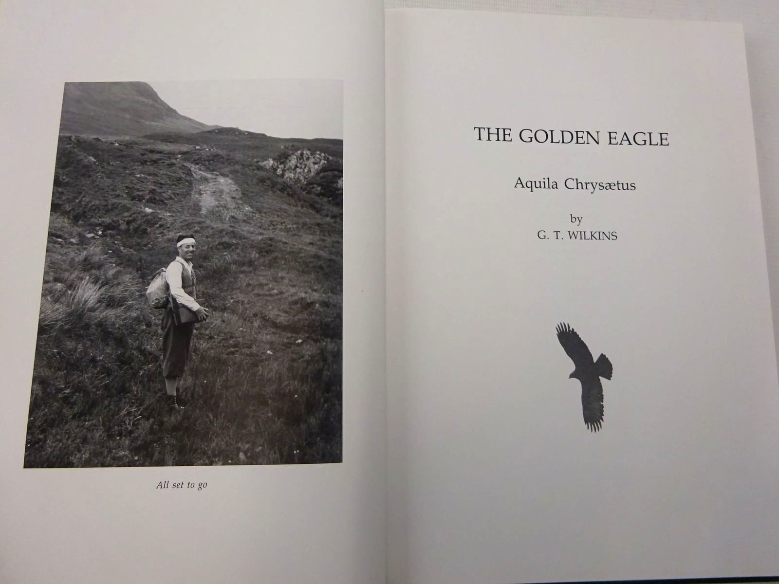 Photo of THE GOLDEN EAGLE AQUILA CHRYSAETUS written by Wilkinson, G.T. illustrated by Wilkinson, G.T. (STOCK CODE: 2127942)  for sale by Stella & Rose's Books