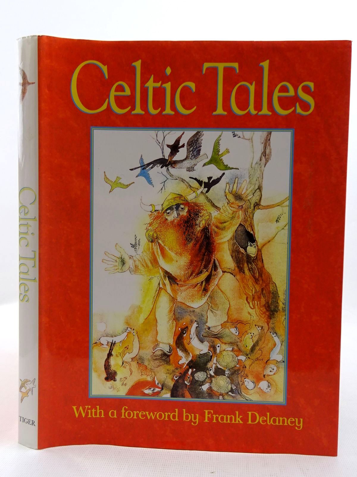 Photo of CELTIC TALES written by Chmelova, Elena<br />Delaney, Frank illustrated by Krejcova, Zdenka published by Tiger Books International (STOCK CODE: 2128447)  for sale by Stella & Rose's Books