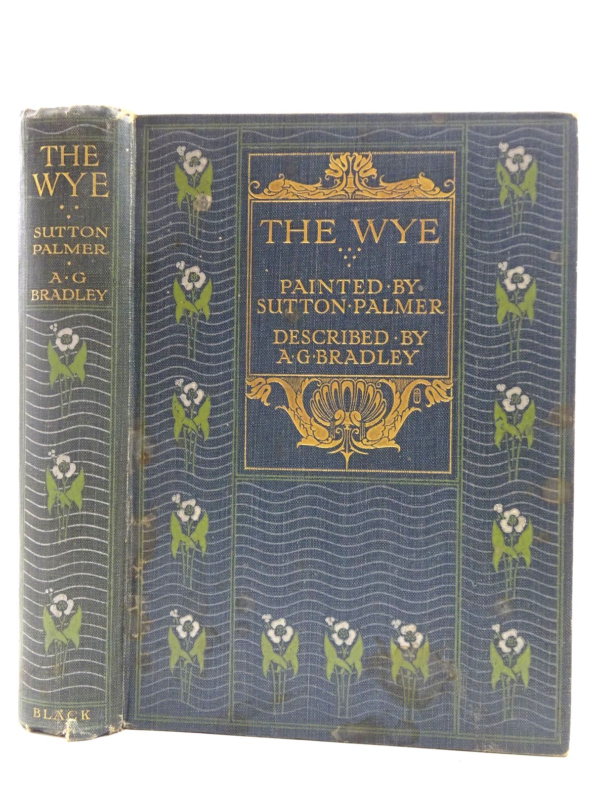 Photo of THE WYE written by Bradley, A.G. illustrated by Palmer, Sutton published by A. & C. Black (STOCK CODE: 2128568)  for sale by Stella & Rose's Books