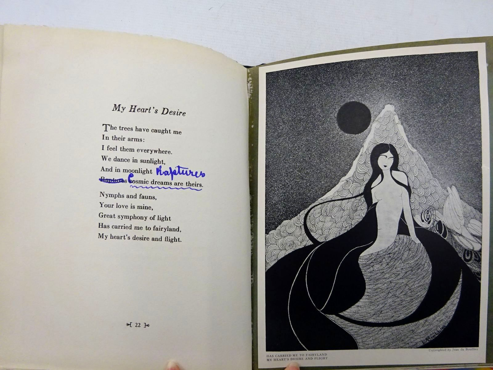 Photo of BEYOND THE MOON written by Perkins, Florence illustrated by Du Bouillier, Jean published by The Schauer Printing Studio, Inc. (STOCK CODE: 2128586)  for sale by Stella & Rose's Books
