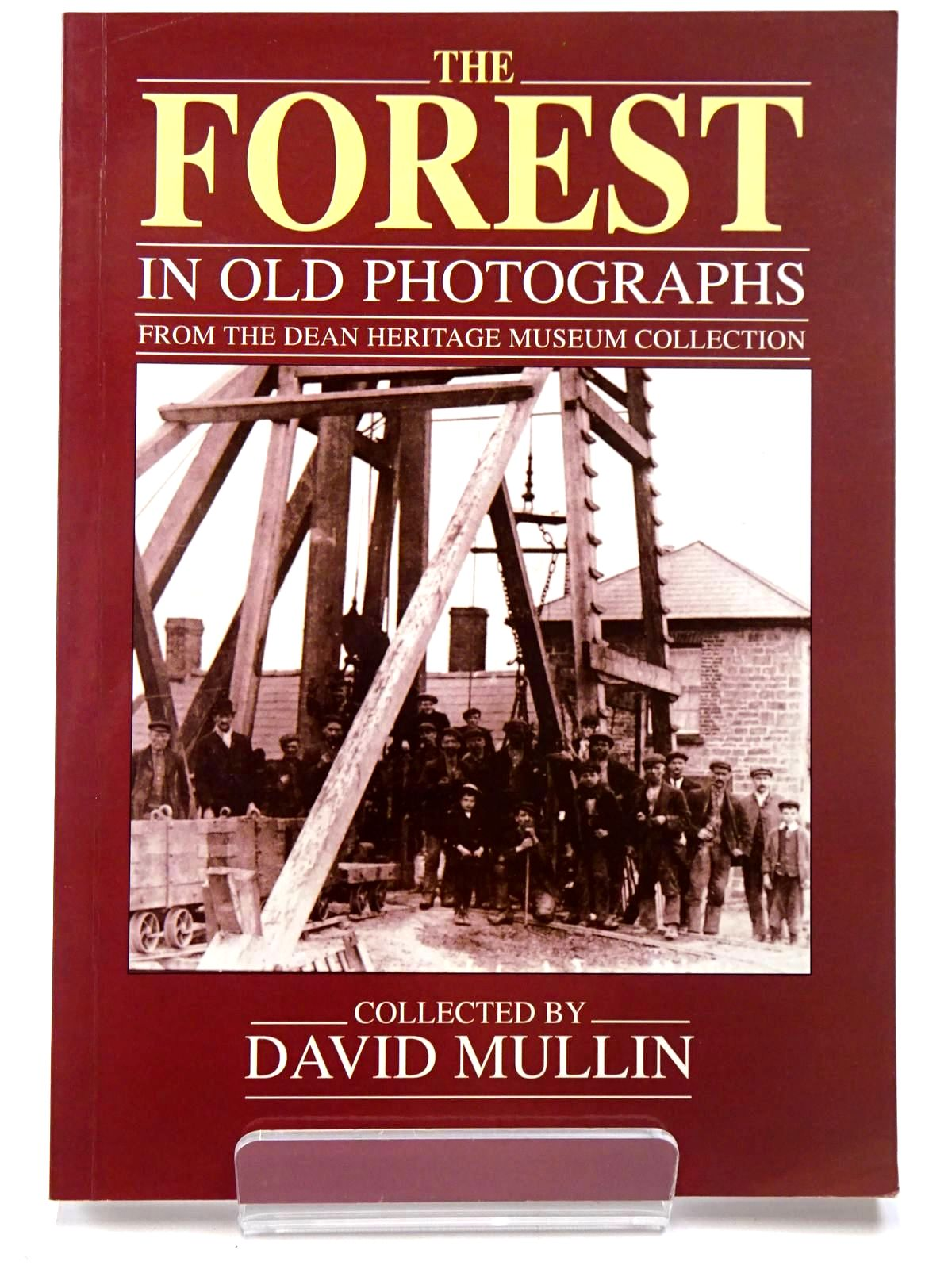 Photo of THE FOREST IN OLD PHOTOGRAPHS written by Mullin, David published by Alan Sutton (STOCK CODE: 2129677)  for sale by Stella & Rose's Books