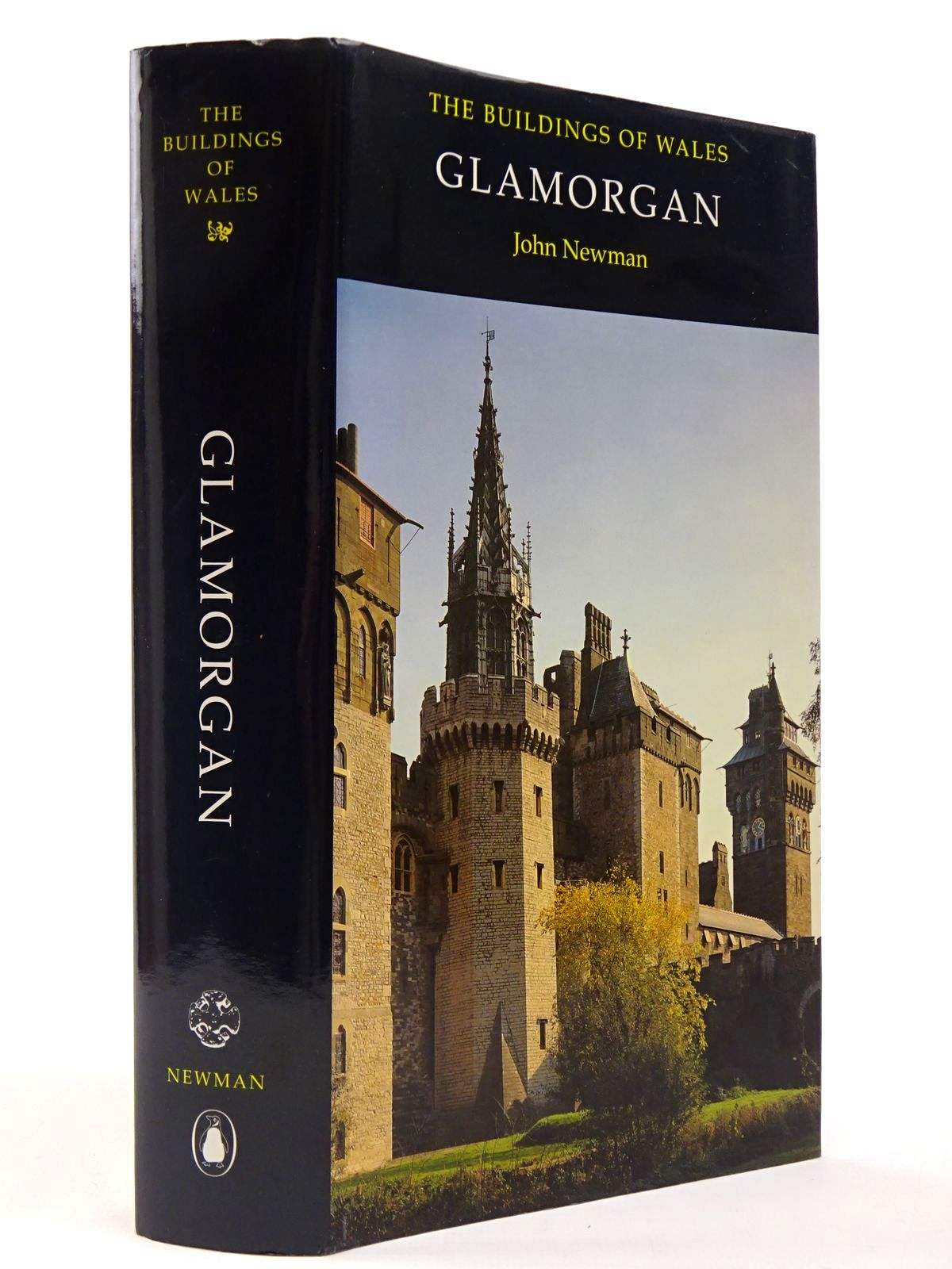 Photo of GLAMORGAN (THE BUILDINGS OF WALES) written by Newman, John published by Penguin (STOCK CODE: 2129763)  for sale by Stella & Rose's Books