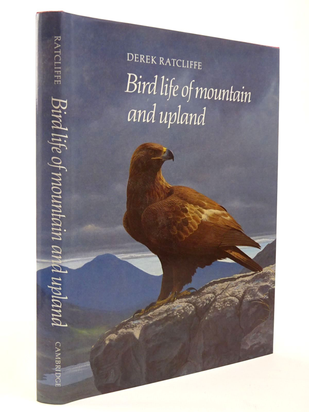 Photo of BIRD LIFE OF MOUNTAIN AND UPLAND written by Ratcliffe, D.A. illustrated by Rose, Chris published by Cambridge University Press (STOCK CODE: 2129812)  for sale by Stella & Rose's Books