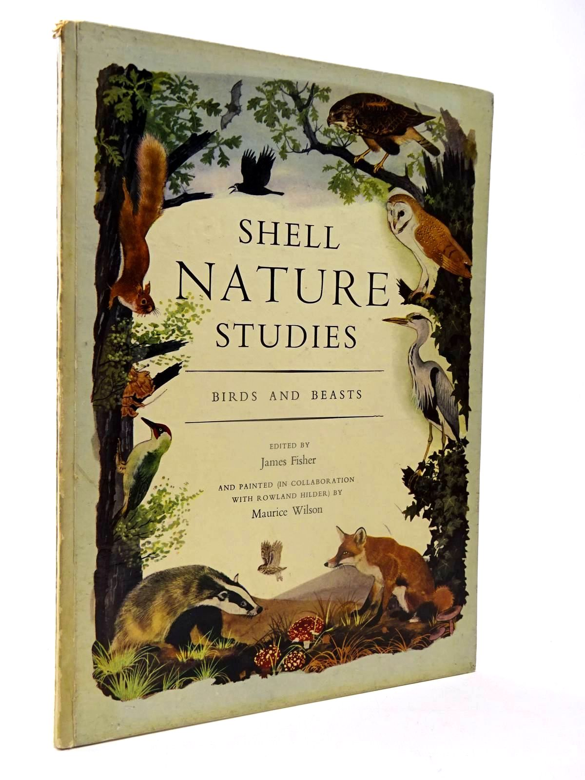 Photo of SHELL NATURE STUDIES BIRDS AND BEASTS written by Fisher, James illustrated by Wilson, Maurice published by Phoenix House (STOCK CODE: 2130103)  for sale by Stella & Rose's Books