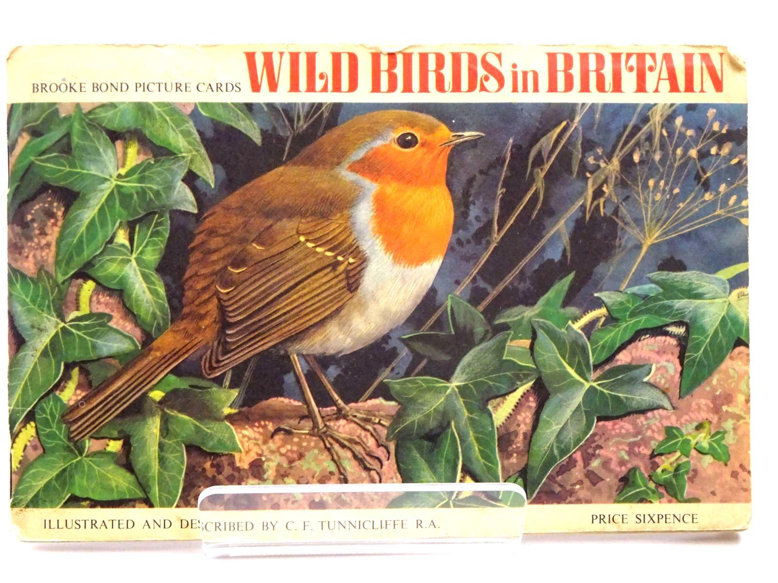 Photo of WILD BIRDS IN BRITAIN