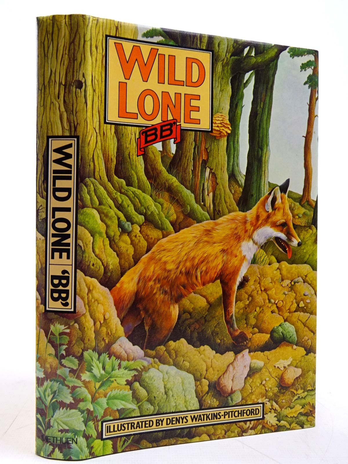 Photo of WILD LONE written by BB,  illustrated by BB,  published by Methuen Children's Books Ltd. (STOCK CODE: 2131128)  for sale by Stella & Rose's Books