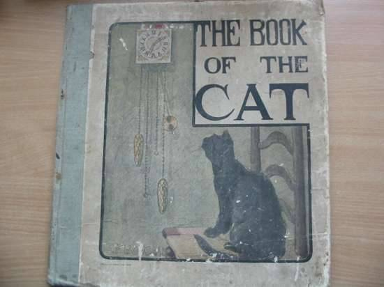 Photo of THE BOOK OF THE CAT written by Humphrey, Mabel illustrated by Bonsall, Elisabeth F. published by Lawrence and Bullen (STOCK CODE: 626069)  for sale by Stella & Rose's Books