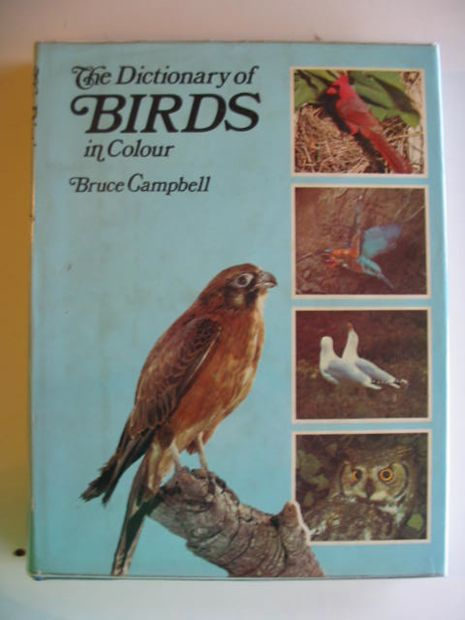 Photo of THE DICTIONARY OF BIRDS IN COLOUR written by Campbell, Bruce published by Book Club Associates (STOCK CODE: 669258)  for sale by Stella & Rose's Books