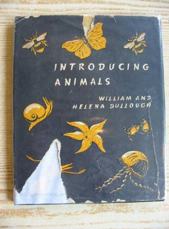 Photo of INTRODUCING ANIMALS written by Bullough, William<br />Bullough, Helena illustrated by Bullough, William published by Methuen & Co. Ltd. (STOCK CODE: 707744)  for sale by Stella & Rose's Books
