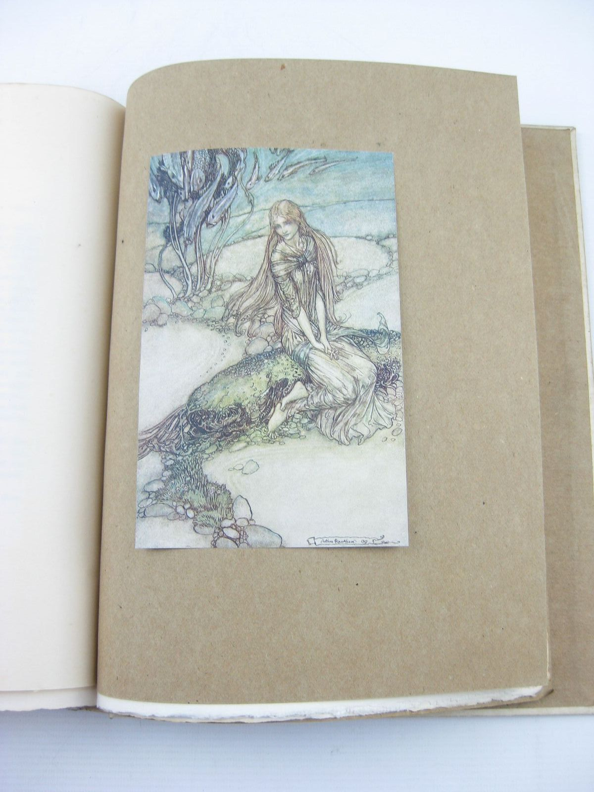 Photo of UNDINE written by De La Motte Fouque, Friedrich illustrated by Rackham, Arthur published by William Heinemann (STOCK CODE: 733868)  for sale by Stella & Rose's Books
