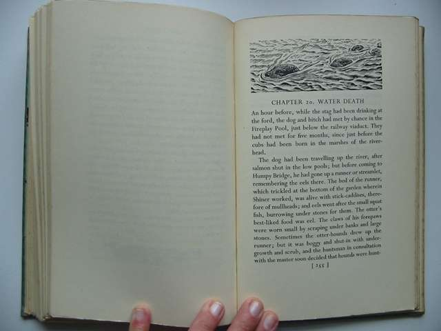 Photo of SALAR THE SALMON written by Williamson, Henry illustrated by Tunnicliffe, C.F. published by Faber & Faber (STOCK CODE: 820486)  for sale by Stella & Rose's Books
