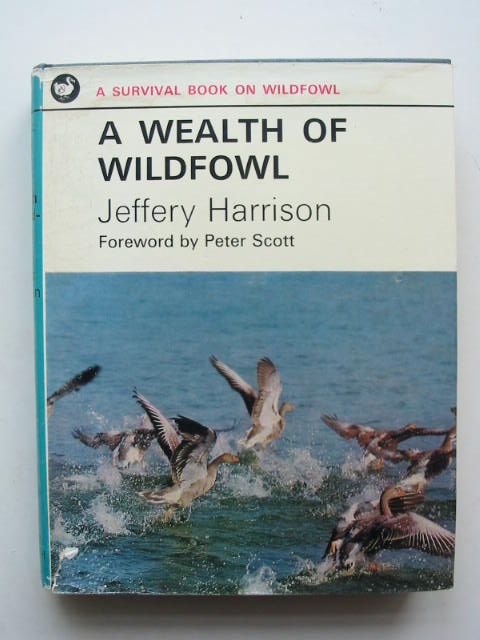 Photo of A WEALTH OF WILDFOWL written by Harrison, Jeffery published by Andre Deutsch (STOCK CODE: 823907)  for sale by Stella & Rose's Books