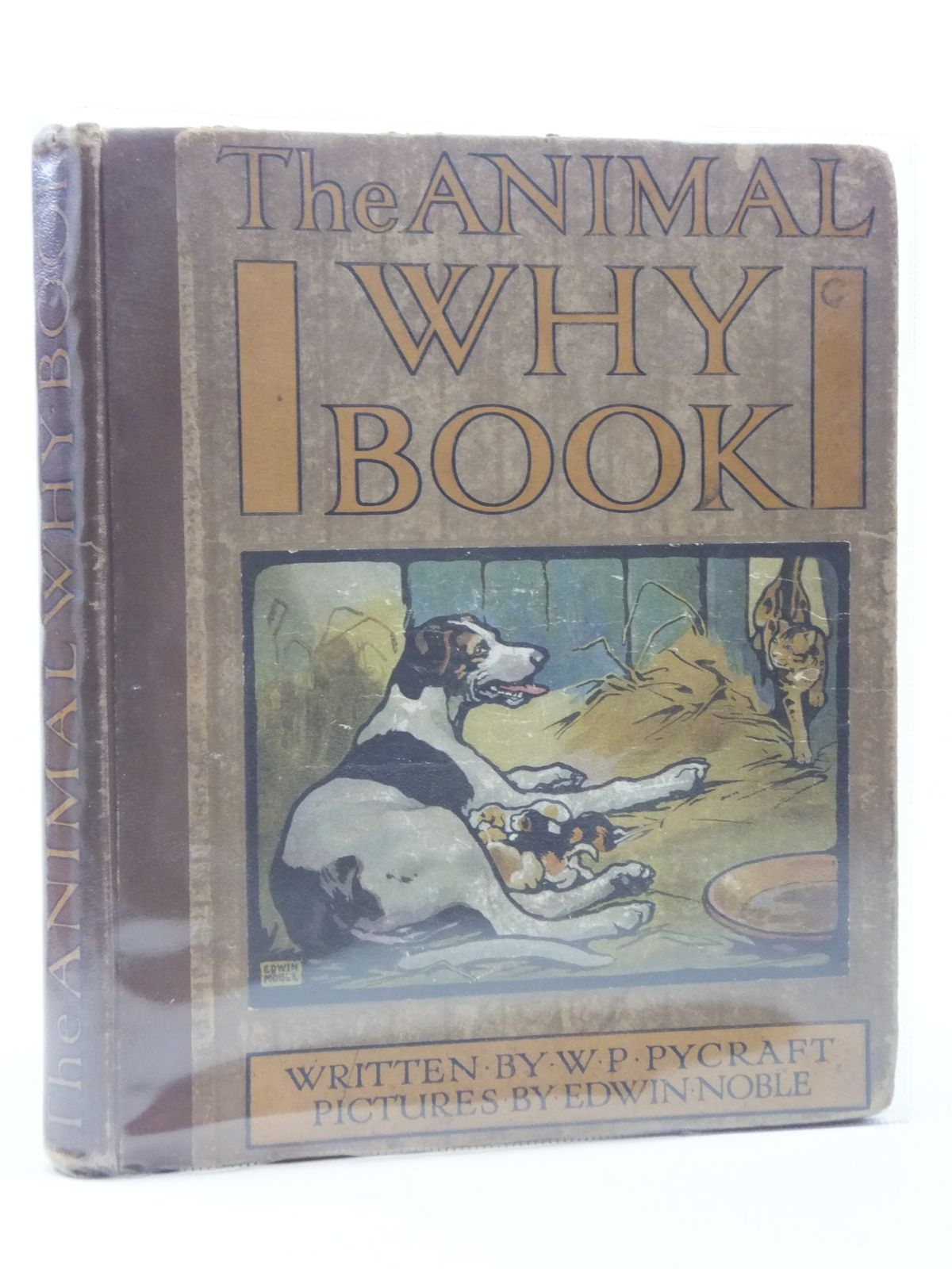 Photo of THE ANIMAL WHY BOOK written by Pycraft, W.P. illustrated by Noble, Edwin published by Wells Gardner, Darton & Co. Ltd. (STOCK CODE: 988076)  for sale by Stella & Rose's Books