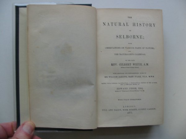 Photo of THE NATURAL HISTORY OF SELBORNE written by White, Gilbert<br />Jardine, William<br />Jesse, Edward published by Bell and Daldy (STOCK CODE: 990467)  for sale by Stella & Rose's Books