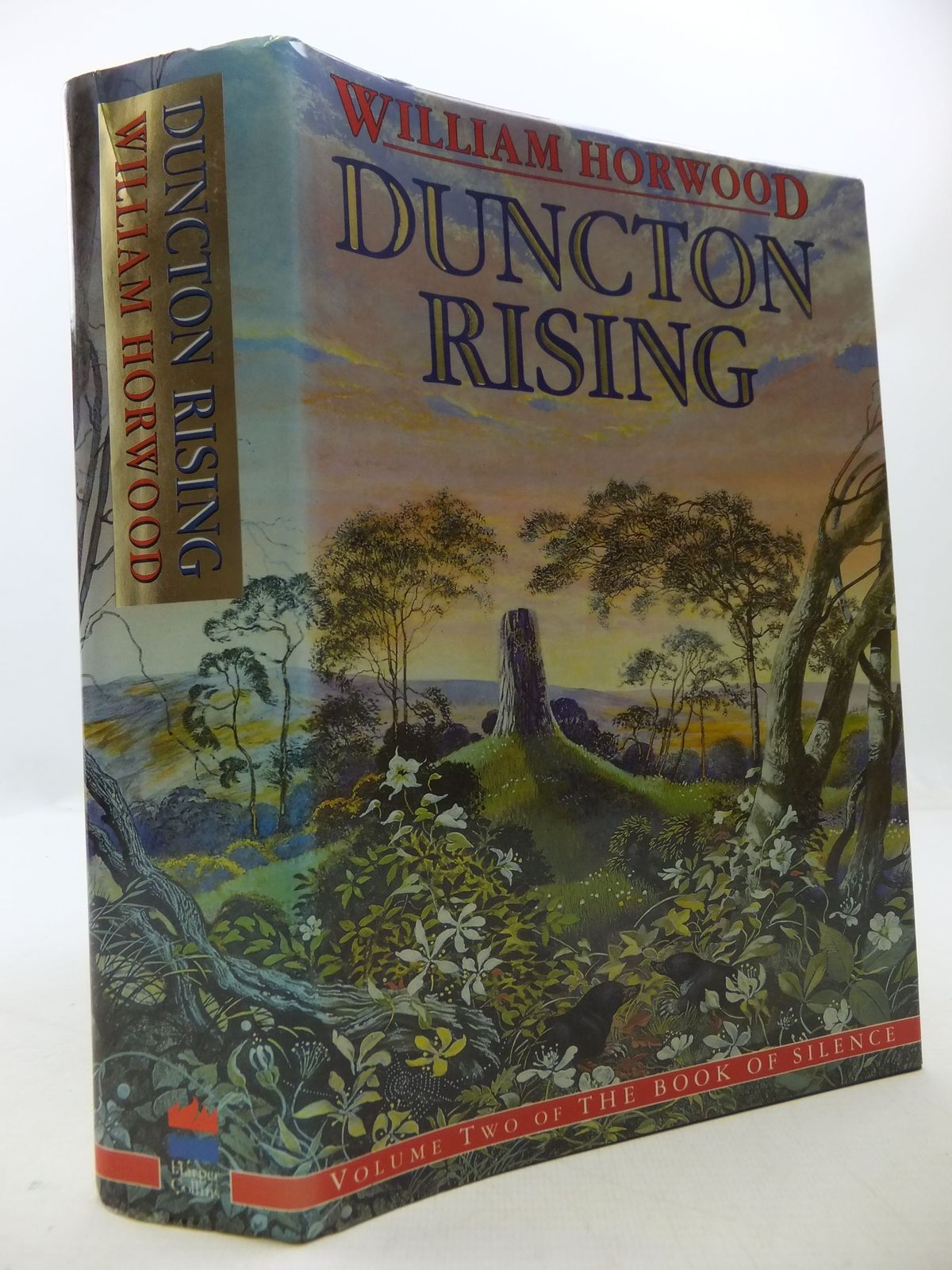 Photo of DUNCTON RISING- Stock Number: 1108708