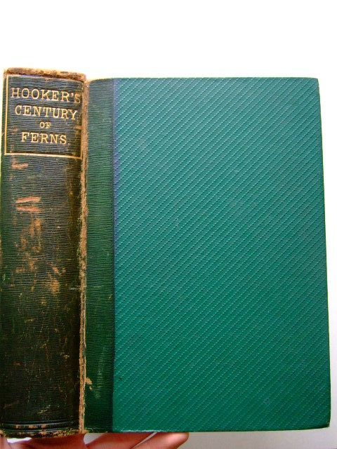 Photo of A CENTURY OF FERNS written by Hooker, William Jackson published by William Pamplin (STOCK CODE: 1203352)  for sale by Stella & Rose's Books
