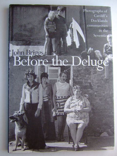 Photo of BEFORE THE DELUGE written by Briggs, John published by Seren (STOCK CODE: 1204655)  for sale by Stella & Rose's Books