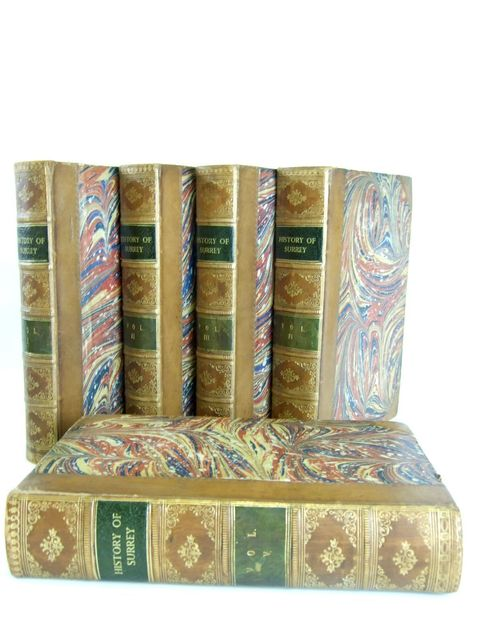 Photo of A TOPOGRAPHICAL HISTORY OF SURREY written by Brayley, Edward Wedlake Mantell, Gideon illustrated by Allom, Thomas published by G. Willis (STOCK CODE: 1205023)  for sale by Stella & Rose's Books