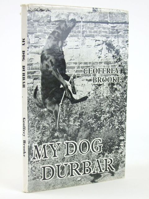 Photo of MY DOG DURBAR- Stock Number: 1205158