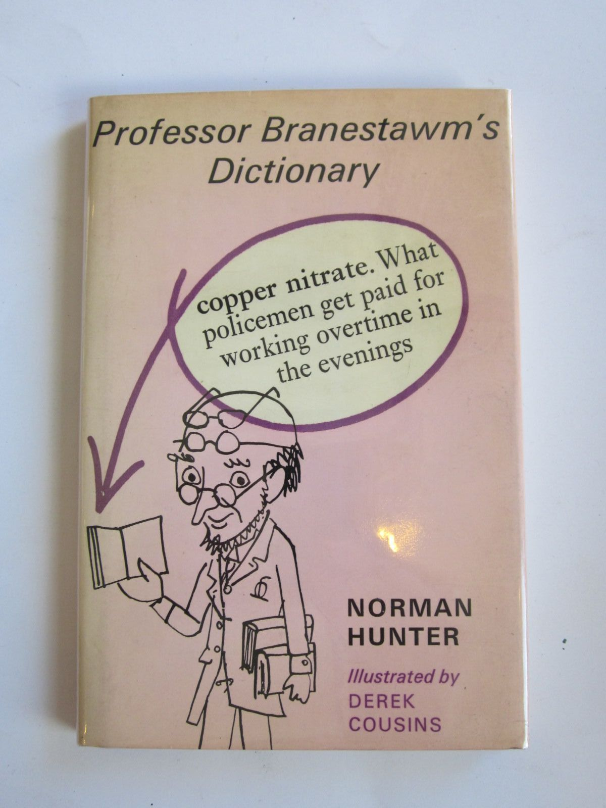 Photo of PROFESSOR BRANESTAWM'S DICTIONARY- Stock Number: 1207708