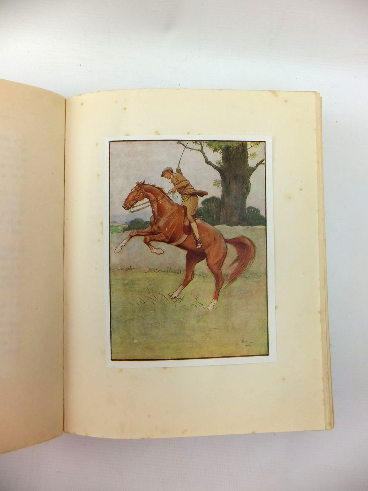 Photo of BLACK BEAUTY written by Sewell, Anna illustrated by Aldin, Cecil published by Jarrolds, Boots the Chemists (STOCK CODE: 1208887)  for sale by Stella & Rose's Books