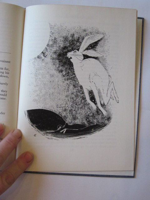Photo of HOW THE WHALE BECAME written by Hughes, Ted illustrated by Adamson, George published by Faber & Faber Ltd. (STOCK CODE: 1303954)  for sale by Stella & Rose's Books