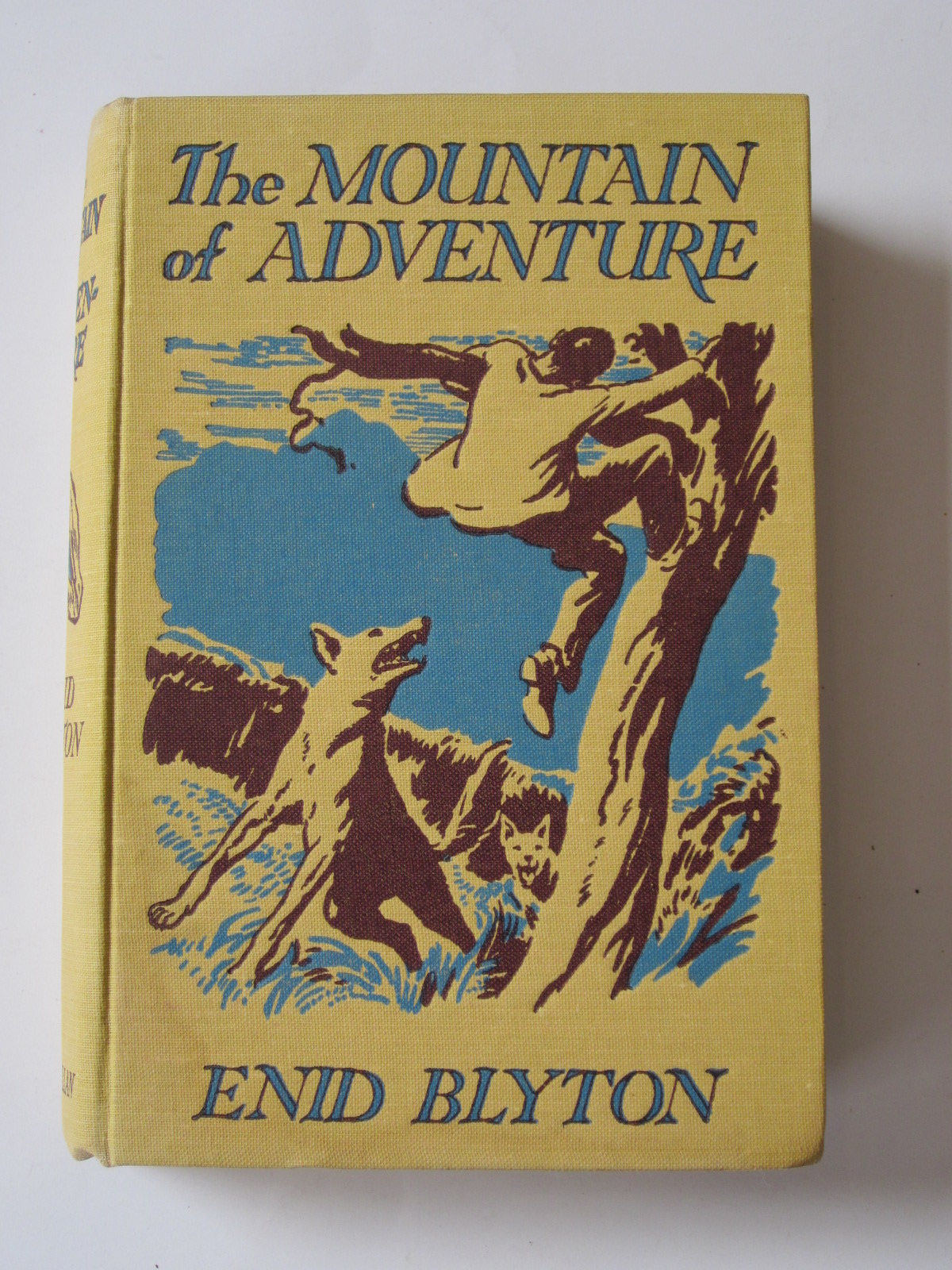 Photo of THE MOUNTAIN OF ADVENTURE written by Blyton, Enid illustrated by Tresilian, Stuart published by Macmillan & Co. Ltd. (STOCK CODE: 1308177)  for sale by Stella & Rose's Books