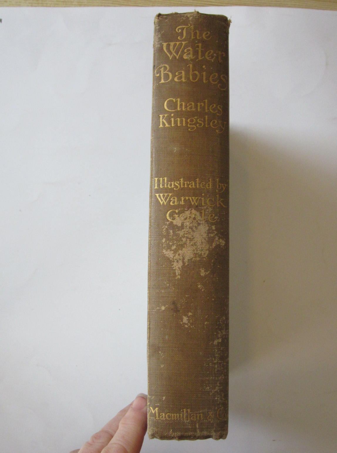 Photo of THE WATER-BABIES written by Kingsley, Charles illustrated by Goble, Warwick published by Macmillan & Co. Ltd. (STOCK CODE: 1308324)  for sale by Stella & Rose's Books