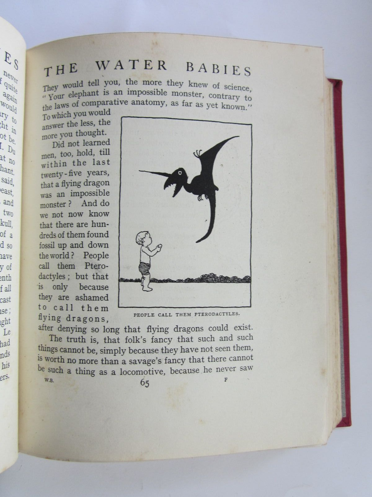 Photo of THE WATER-BABIES written by Kingsley, Charles illustrated by Robinson, W. Heath published by Constable & Co. Ltd. (STOCK CODE: 1308562)  for sale by Stella & Rose's Books