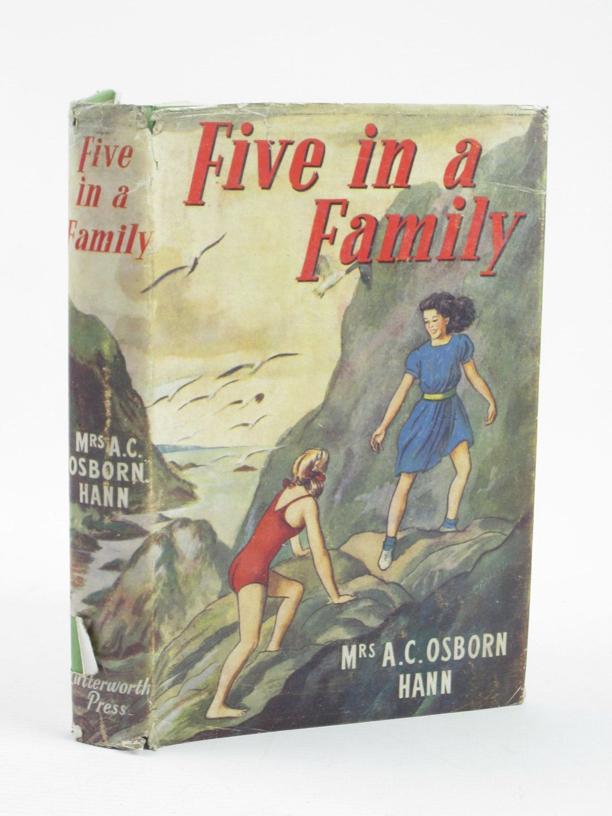Photo of FIVE IN A FAMILY- Stock Number: 1311357