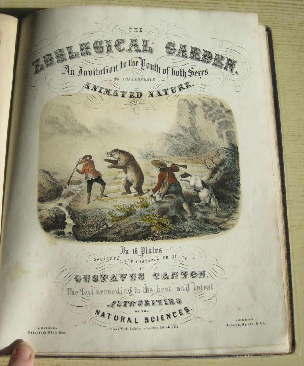 Photo of THE ZOOLOGICAL GARDEN illustrated by Canton, Gustav published by Joseph, Myers & Co. (STOCK CODE: 1311370)  for sale by Stella & Rose's Books