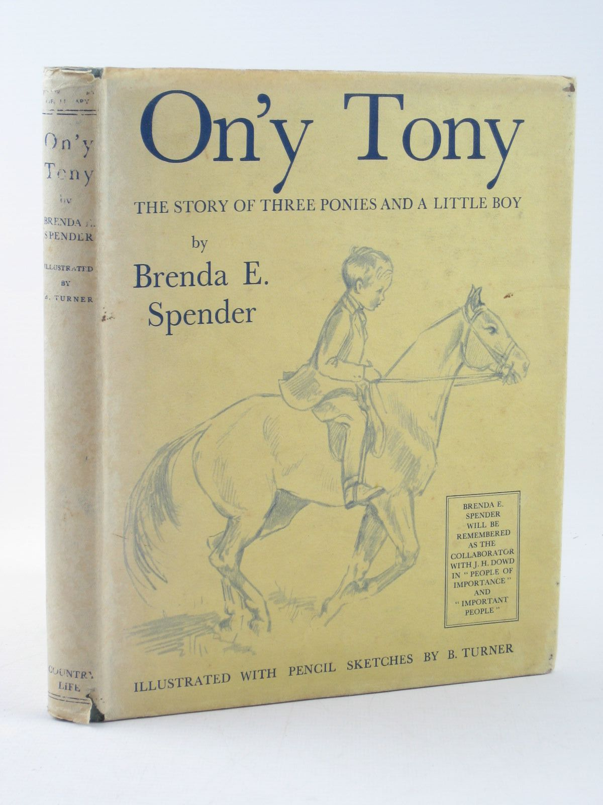 Photo of ON'Y TONY- Stock Number: 1311832