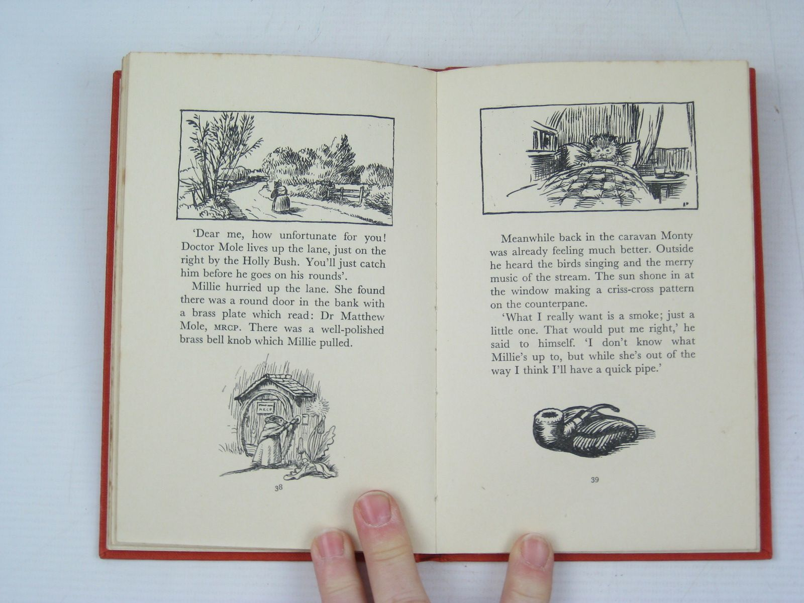 Photo of MONTY WOODPIG AND HIS BUBBLEBUZZ CAR written by BB,  illustrated by BB,  published by Ward Lock & Co Ltd. (STOCK CODE: 1314066)  for sale by Stella & Rose's Books