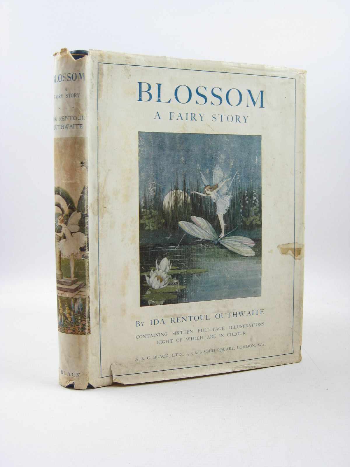 Photo of BLOSSOM A FAIRY STORY- Stock Number: 1314196