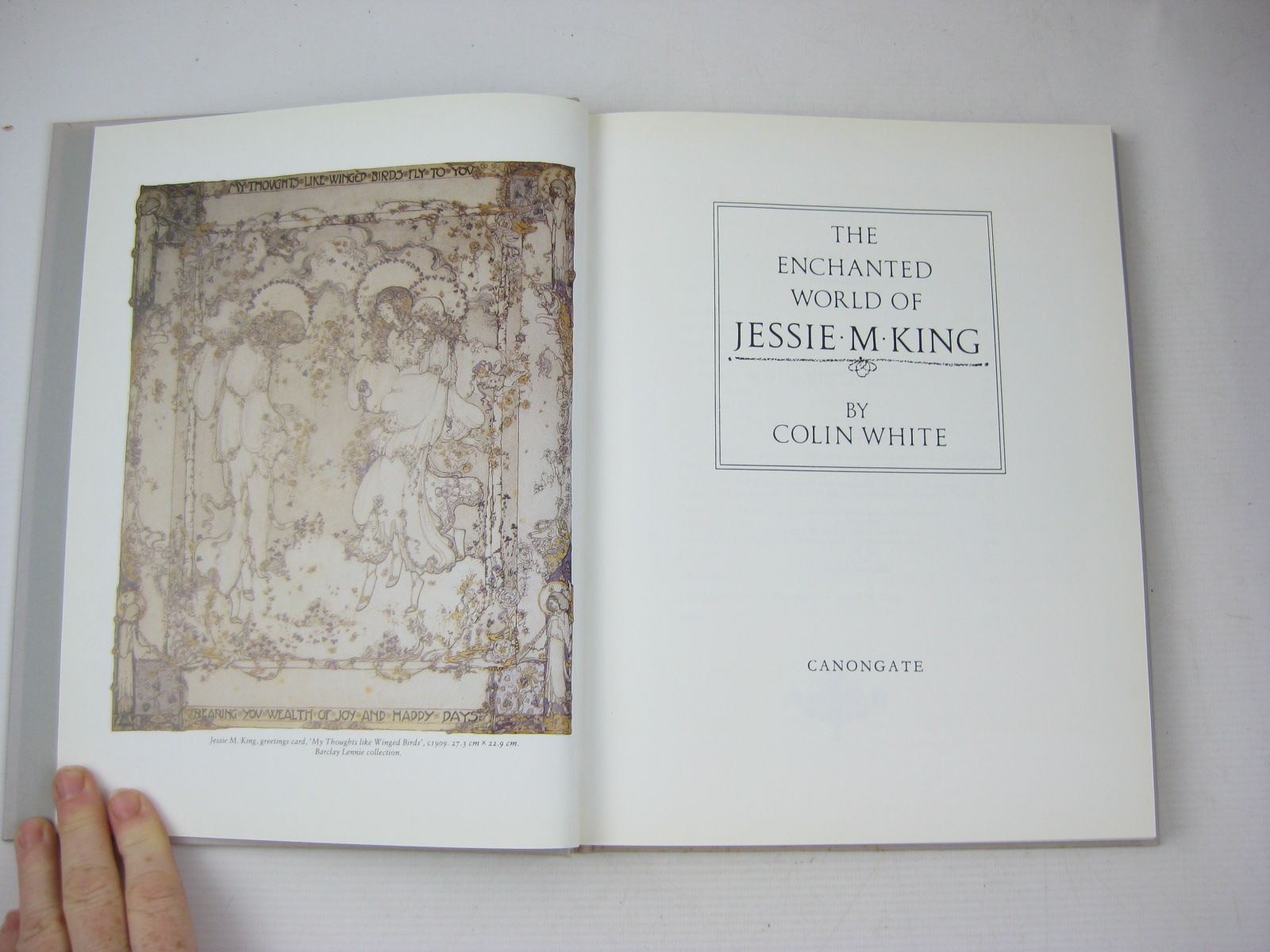 Photo of THE ENCHANTED WORLD OF JESSIE M. KING written by White, Colin illustrated by King, Jessie M. published by Canongate Publishing Limited (STOCK CODE: 1314300)  for sale by Stella & Rose's Books