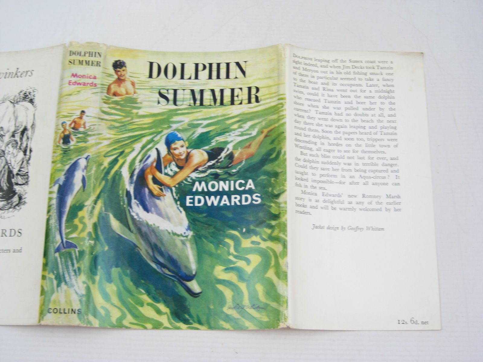 Photo of DOLPHIN SUMMER written by Edwards, Monica illustrated by Whittam, Geoffrey published by Collins (STOCK CODE: 1314488)  for sale by Stella & Rose's Books