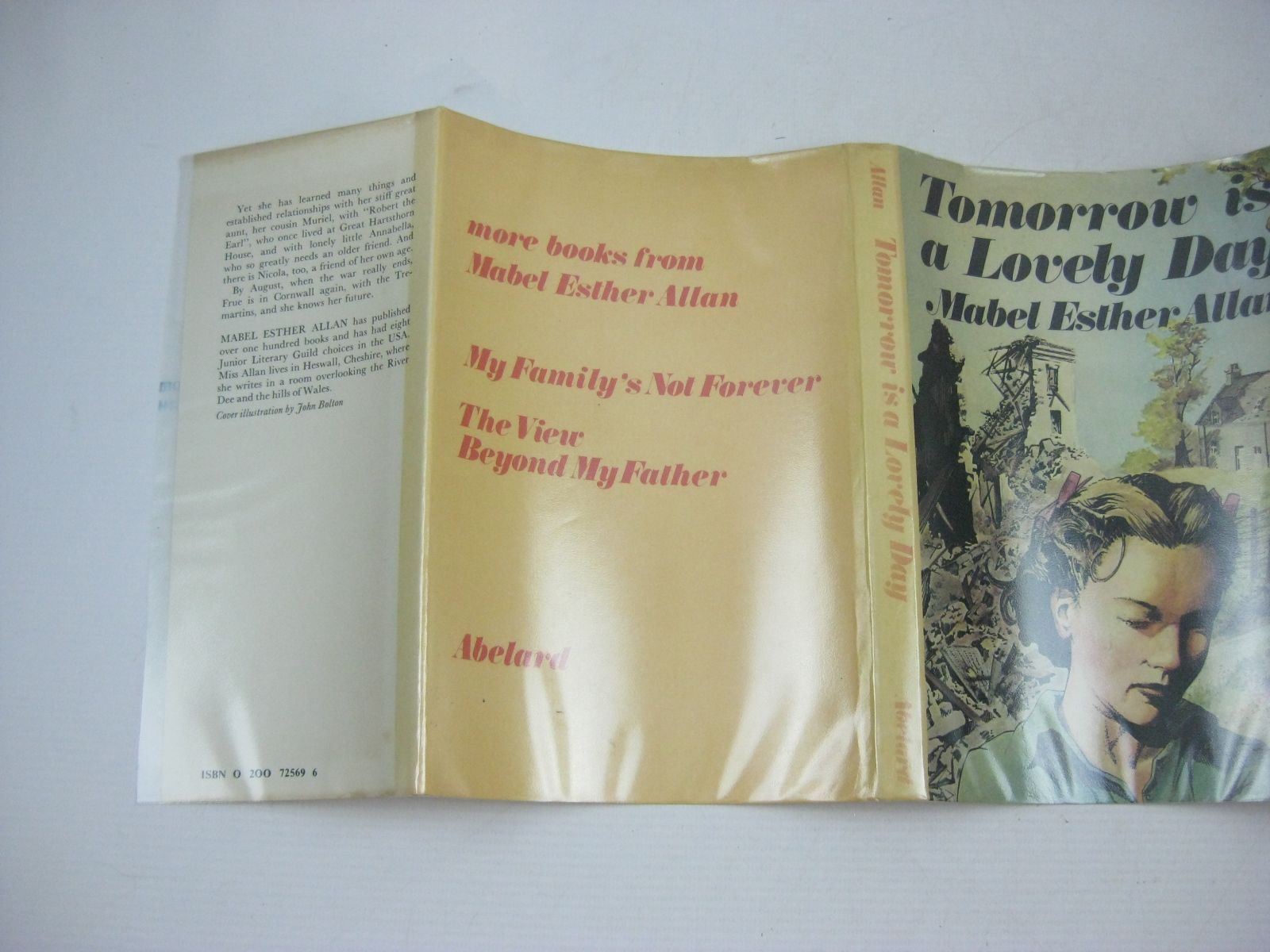 Photo of TOMORROW IS A LOVELY DAY written by Allan, Mabel Esther published by Abelard (STOCK CODE: 1314760)  for sale by Stella & Rose's Books