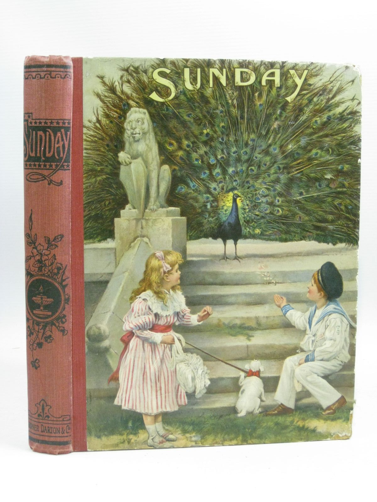Photo of SUNDAY written by Lefevre, Felicite