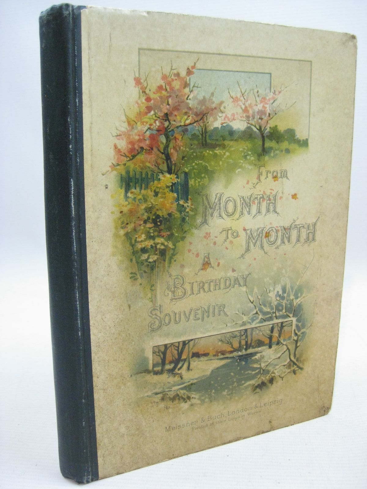 Photo of FROM MONTH TO MONTH written by Haite, J.J.<br />Radford, Caroline illustrated by Haite, George C. published by Meissner &amp; Buch (STOCK CODE: 1315516)  for sale by Stella & Rose's Books