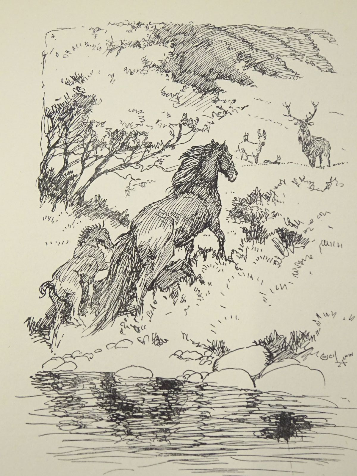 Photo of THE CECIL ALDIN BOOK written by Aldin, Cecil Wodehouse, P.G. et al,  illustrated by Aldin, Cecil published by Eyre & Spottiswoode (STOCK CODE: 1318011)  for sale by Stella & Rose's Books
