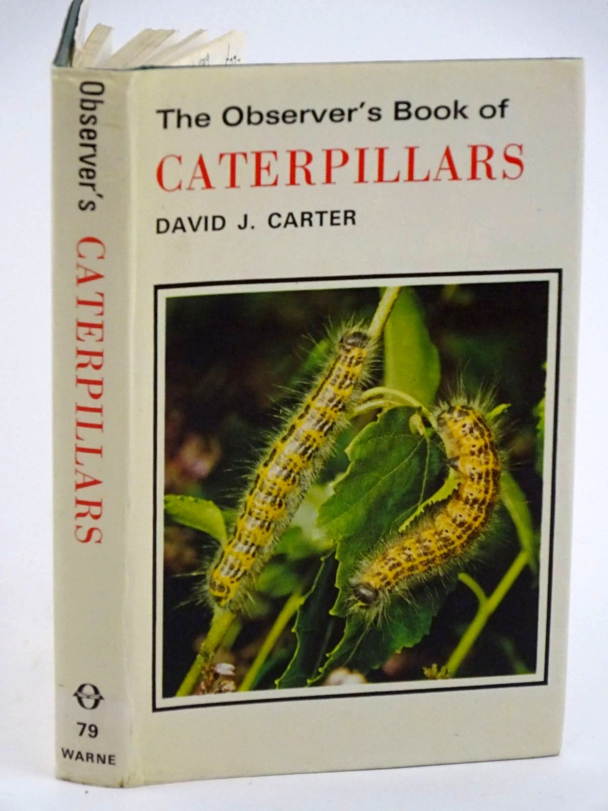 Photo of THE OBSERVER'S BOOK OF CATERPILLARS- Stock Number: 1318113