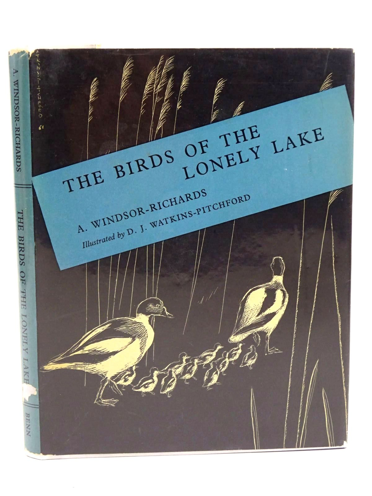 Photo of BIRDS OF THE LONELY LAKE- Stock Number: 1318351