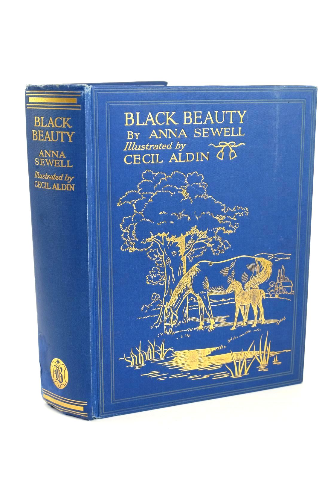 Photo of BLACK BEAUTY- Stock Number: 1318518