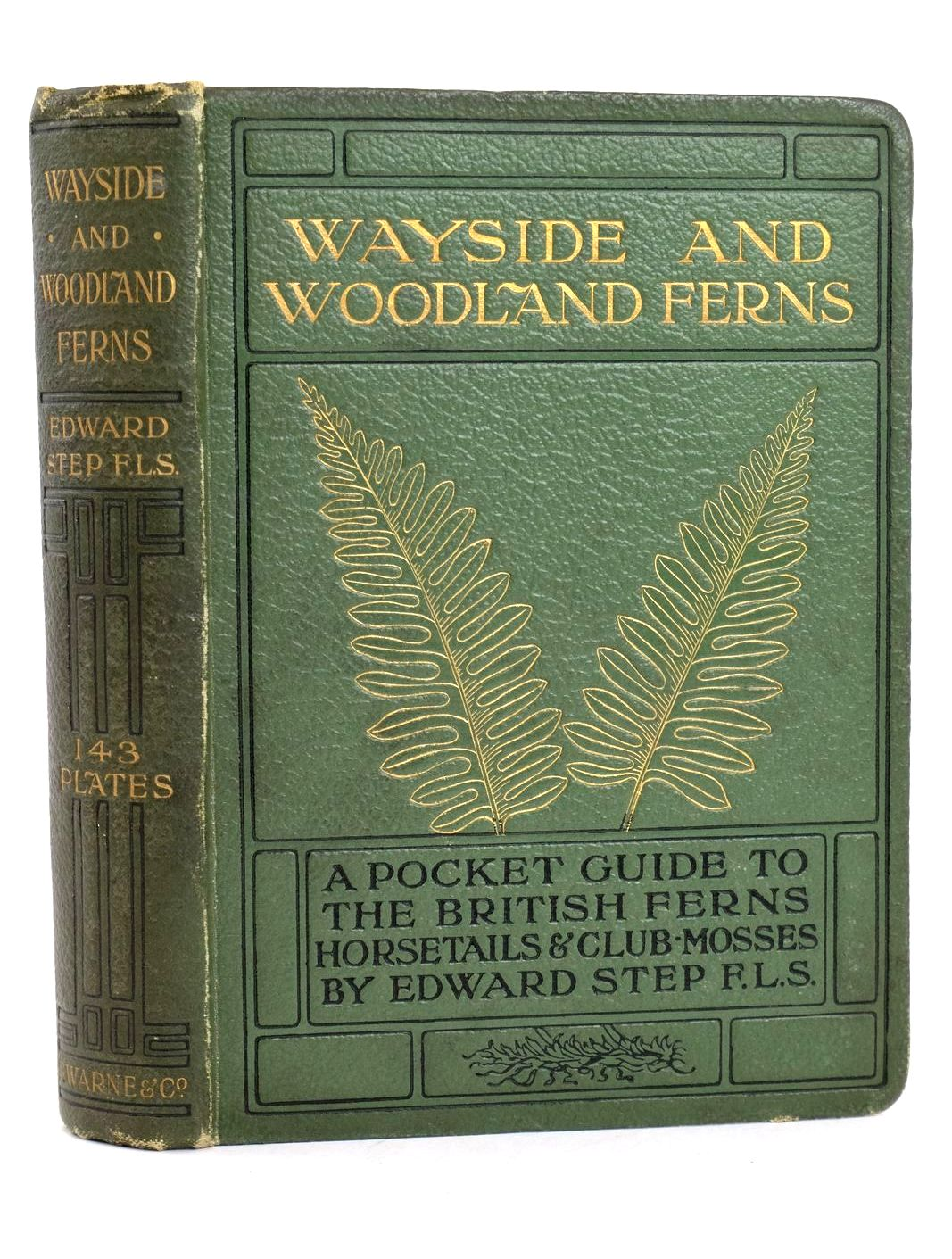 Photo of WAYSIDE AND WOODLAND FERNS- Stock Number: 1318659