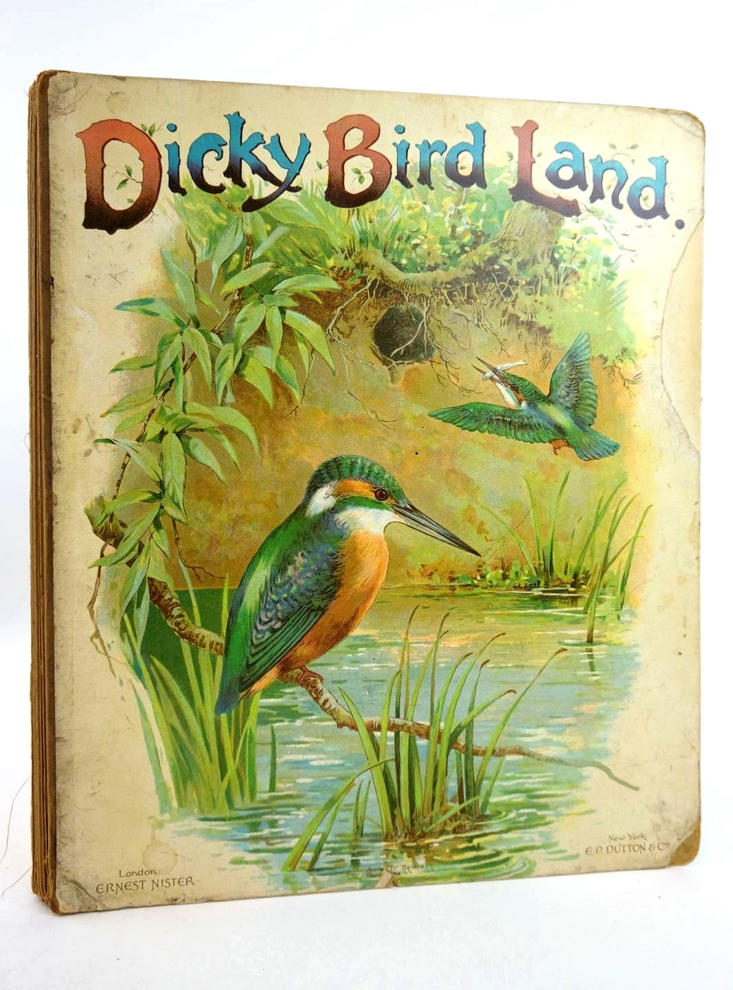 Photo of DICKY BIRD LAND- Stock Number: 1318776