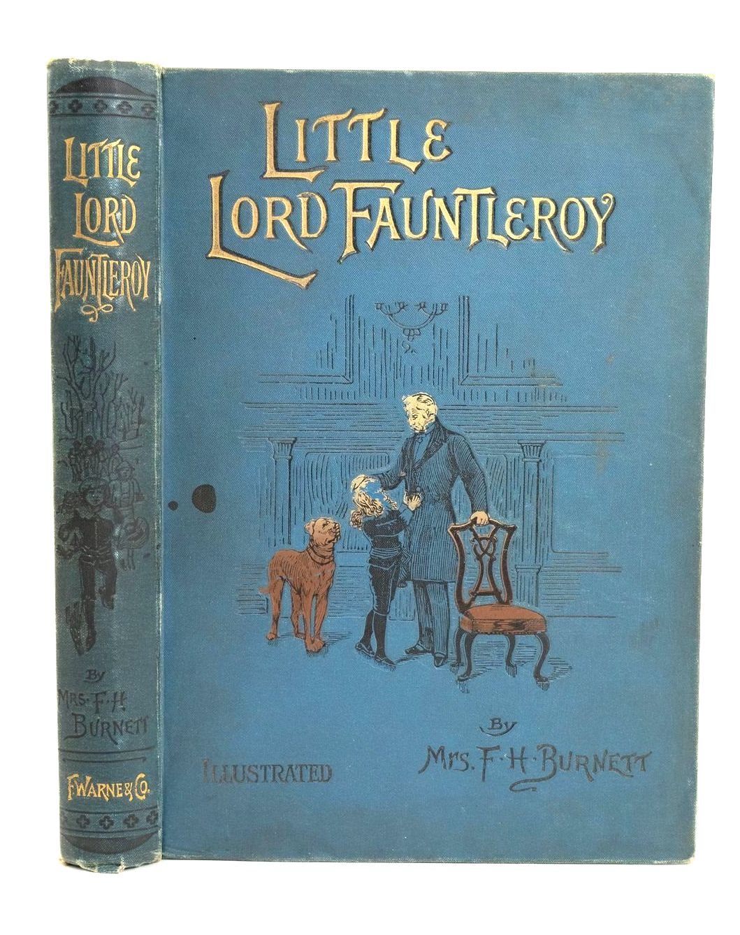 Photo of LITTLE LORD FAUNTLEROY- Stock Number: 1318803